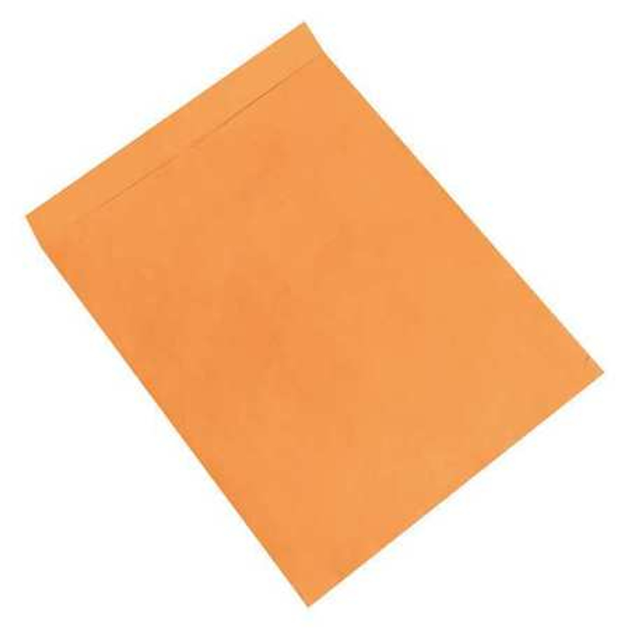 "Large Kraft Jumbo Envelopes  22"" x 27"" qty 100 (PC-22x27-100)"