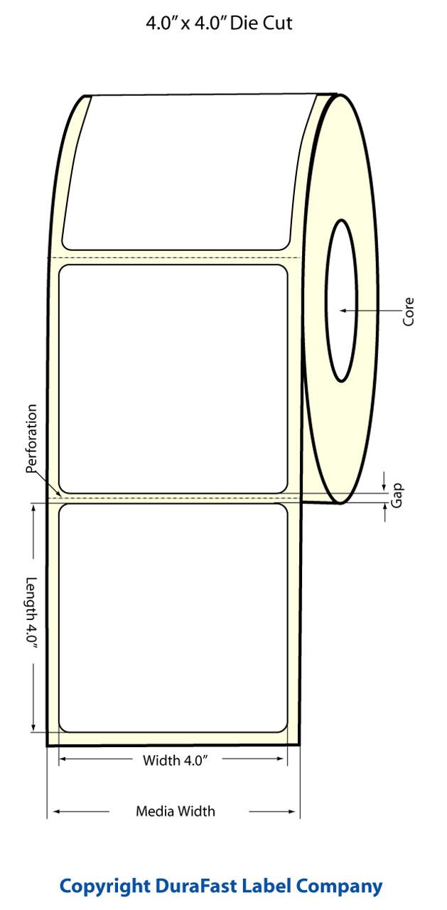 """Epson 4"""" x 4"""" High Gloss Label for TM-C3400 & TM-C3500"""