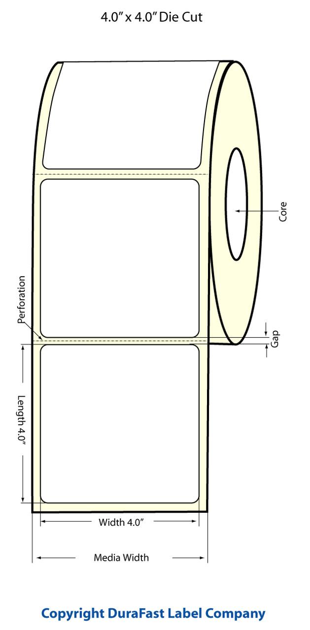 "Epson 4"" x 4"" Matte Polypropylene Labels for TM-C3400 & TM-C3500"