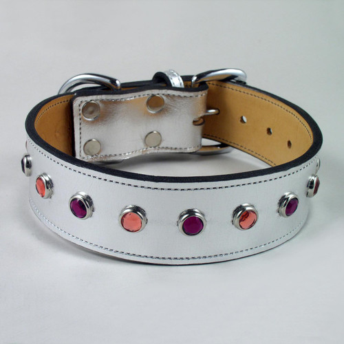 Silver metallic leather dog collar with jeweled studs.