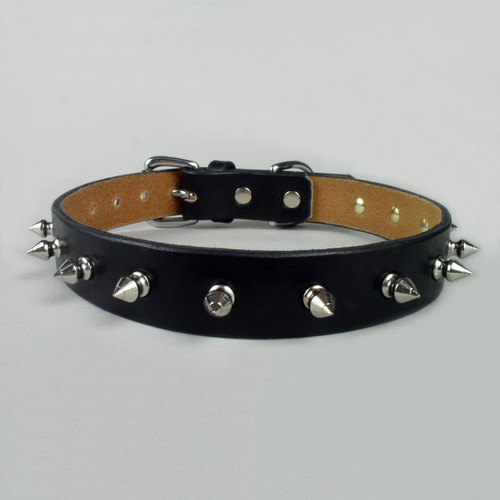 "Standard Spiked Dog Collar 3/4"" wide"