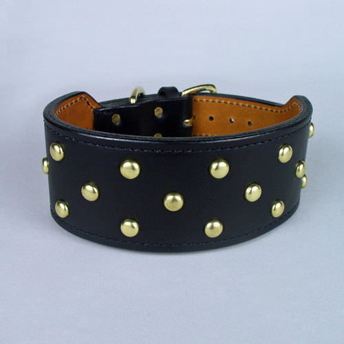 "Studded Wide Rugged Dog Collar (2 1/2"" taper to 1 1/4"")"