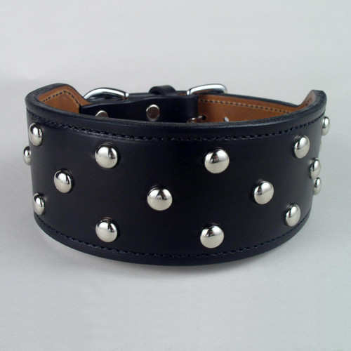 "Studded Wide Rugged Dog Collar (2 3/4"" taper to 1 1/2"")"