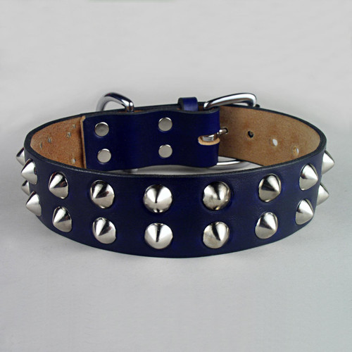 "Double Row Studs Dog Collar 1 3/4"" wide"