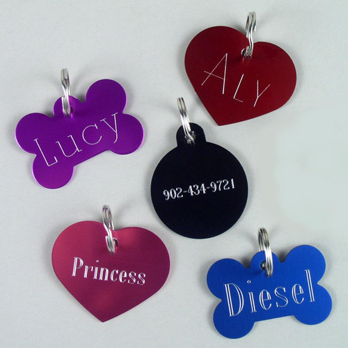 Personalized dog tags with your dog's name and phone number engraved.