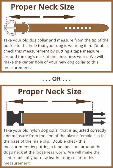 proper-neck-size-measurement-instructions.jpg