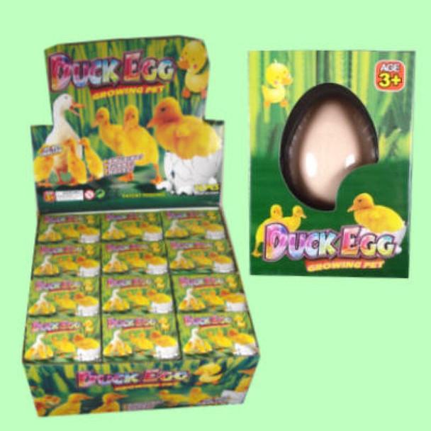 Hatch Em Ducks Growing Pet 12 per counter display .79 ea