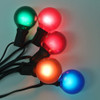 Black C7 String Light with Multi Satin G40 Bulbs