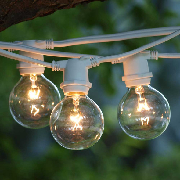 100' White C9 Commercial Grade String Light with G50 Bulbs