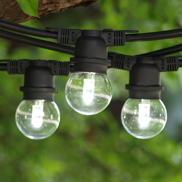 48' Black Commercial String Light & Cool White Professional LED G50 Bulbs