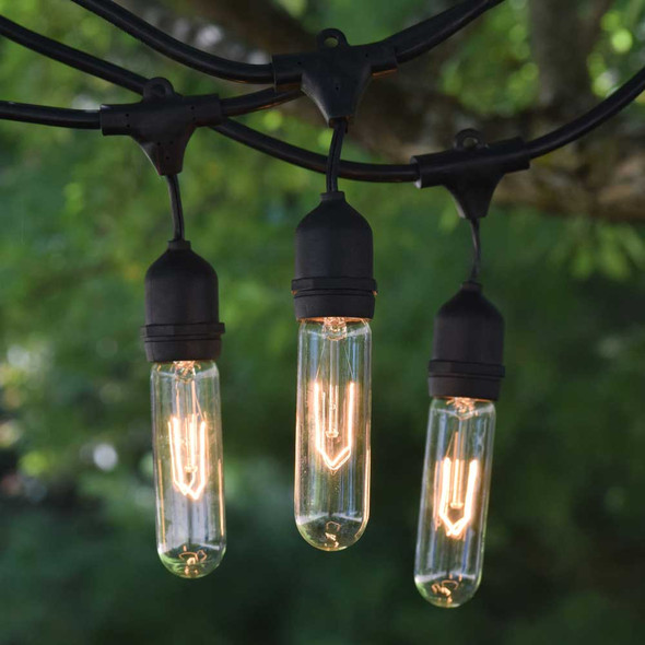 100' Vintage String Lights & T9 Edison Bulbs