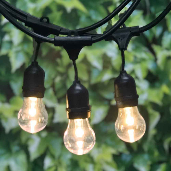 48' Commercial String Light with LED A15 Professional Bulbs