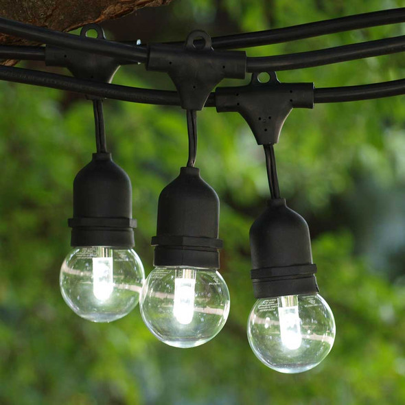 48' Black Commercial String Light, Suspended Socket & Cool White Professional LED G50 Bulbs