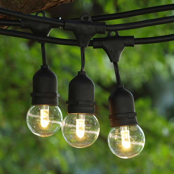 48' Black LED Commercial String Light, Suspended Socket & Professional LED G50 Bulbs