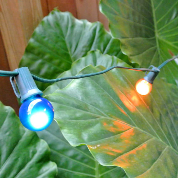 Green C7 String Light with Multi Satin G30 Bulbs feature