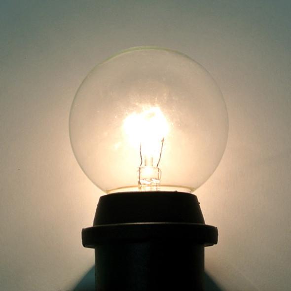 Clear G50 Bulb