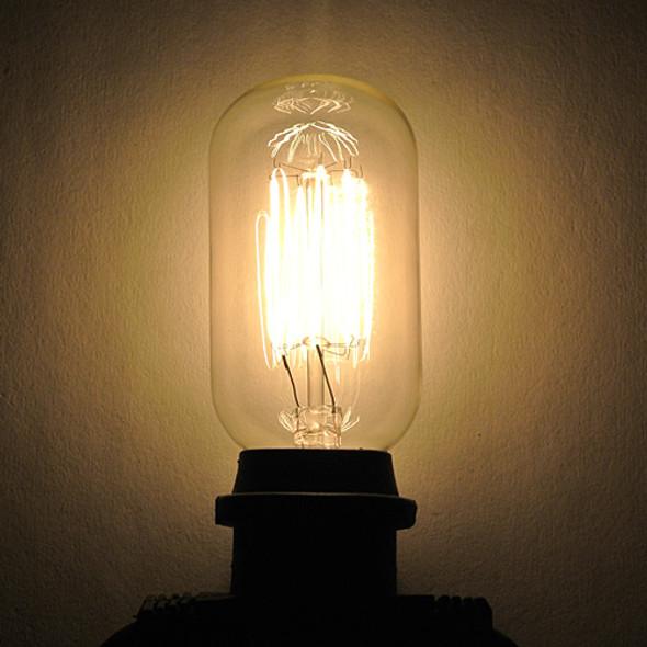 T14 Edison Bulb - squirrel cage filament
