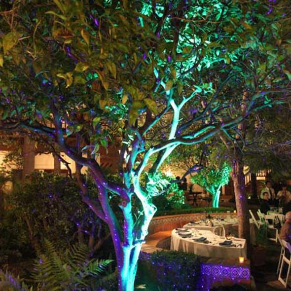 Blue Spotlight Projection Light tree