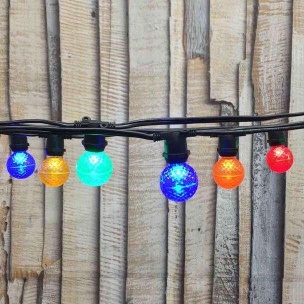 25' Black C9 Commercial Grade String Light with Multi Color LED G40 Bulbs