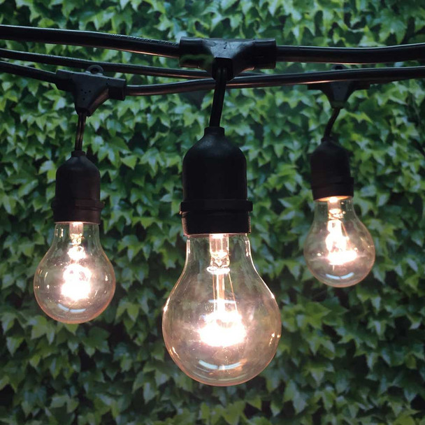 100' Black Commercial String Light, Suspended Socket & A19 Bulbs