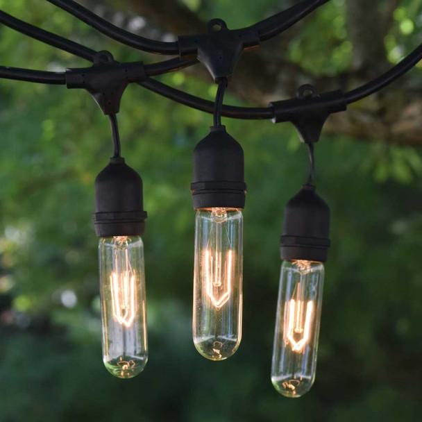 100' Vintage String Lights & T9 Edison Bulbs