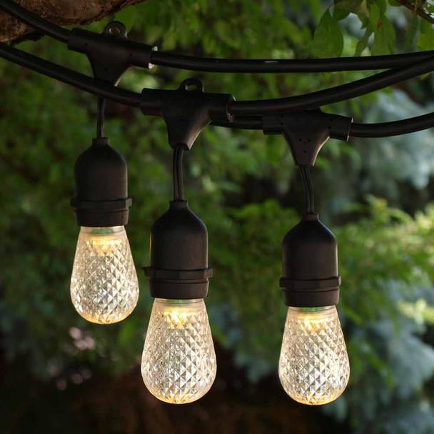 100' Black Suspended LED Outdoor String Lights & LED S14 Bulbs
