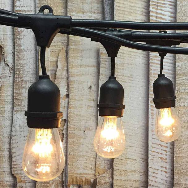 100' Black LED Commercial String Light, Suspended Sockets & Premium LED S14 Bulbs (9 LEDs)