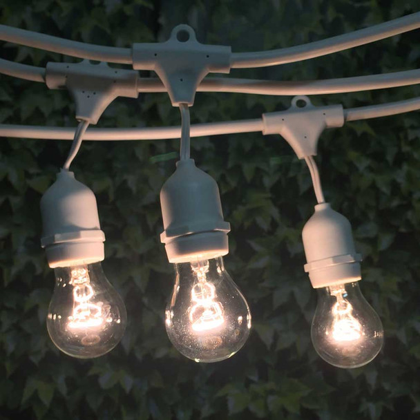 48' White Commercial Grade String Light Cord with Suspended Sockets and A15 Bulbs