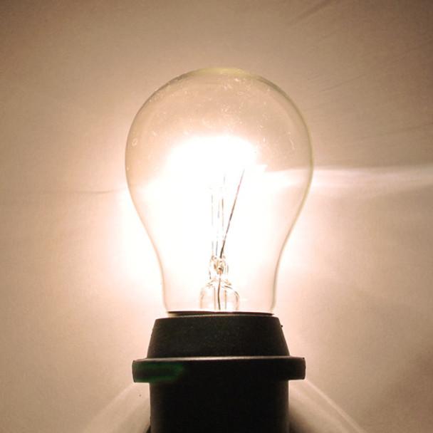 Clear A15 Bulb