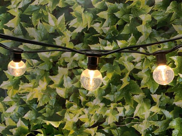 25' Black C7 Commercial String Light & LED G40 Bulbs