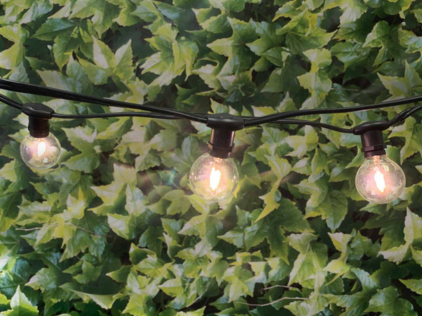 25' Black C7 Commercial String Light & LED G40 Vintage Bulbs