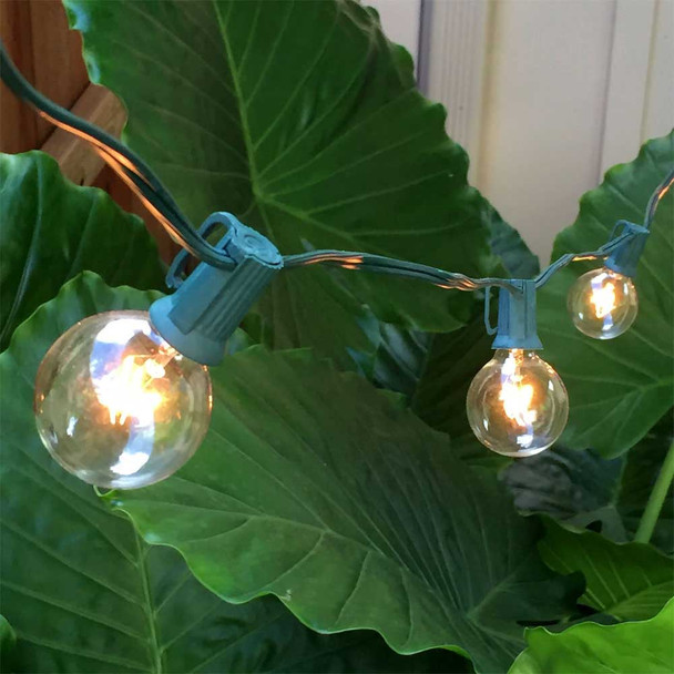 Green C7 String Light with Clear G40 Bulbs