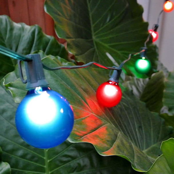 Green C7 String Light with Multi Satin G50 Bulbs