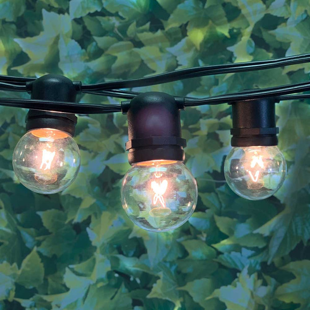 Outdoor String Lights with G50 Bulbs