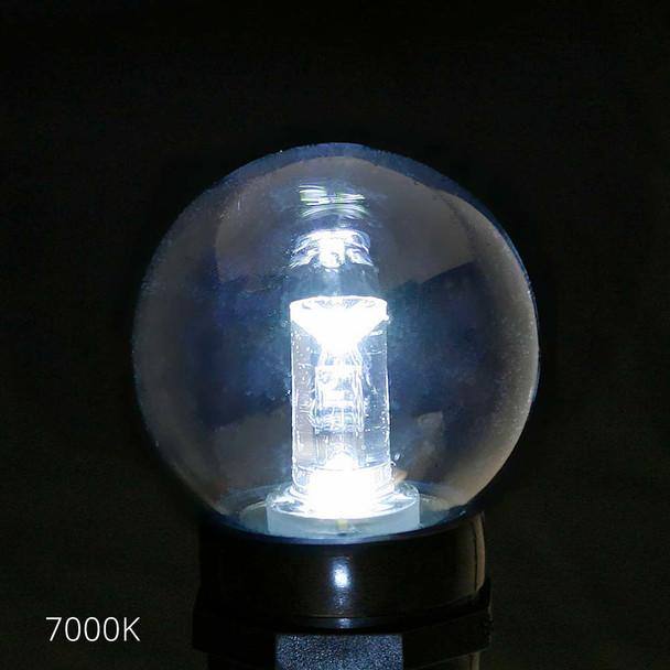 Professional LED G50 Bulb, 7000K