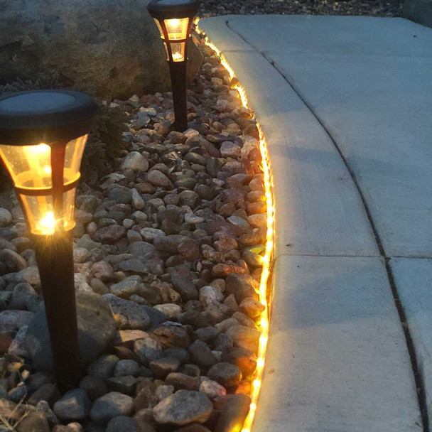 LED Color Changing Rope Lights in landscape