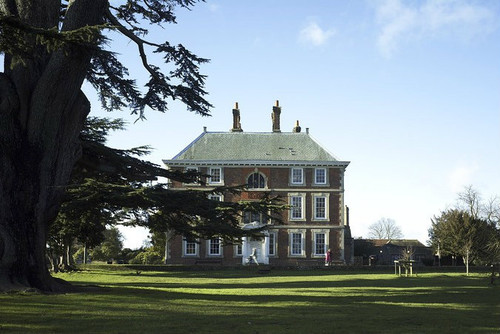 image of mansion with a large tree in the foreground