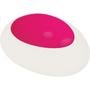 Remote Control Egg