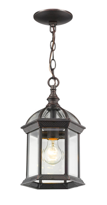 Z-Lite Annex Collection 1 Light Outdoor Chain in Rust Finish, 563CHM-RT