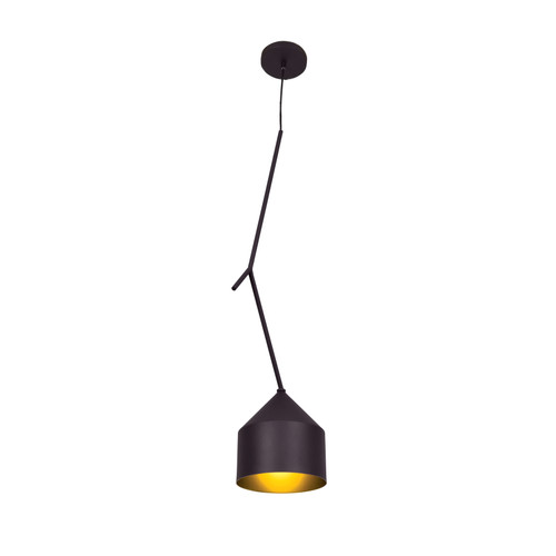 Access Lighting Pizzazz Collection 1-Light Oblong Pendant in Black and Gold Finish
