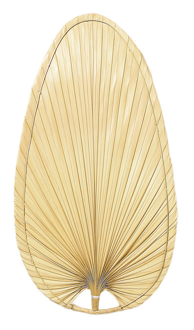 Fanimation Caruso Blade Set of Ten - 22 inch - Narrow Oval Palm - Natural