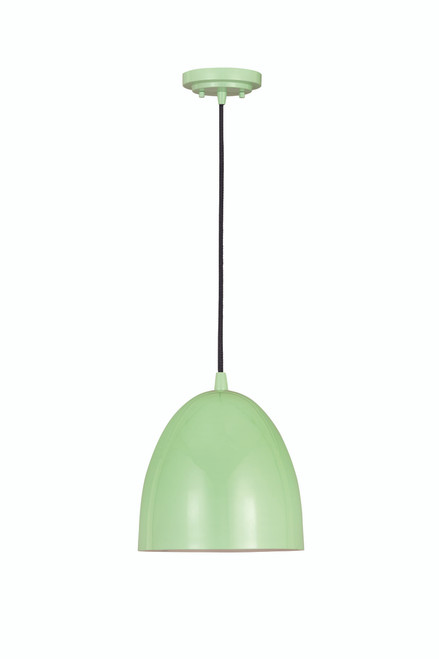 Z-Lite Z Studio Dome Pendant Collection 1 Light Pendant in Mint