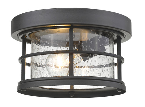 Z-Lite Exterior Additions Collection 1 Light Outdoor in Black Finish, 555F-BK