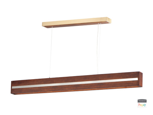 ET2 iWood Friends of Hue LED Pendant in Antique Pecan / Brushed Champagne