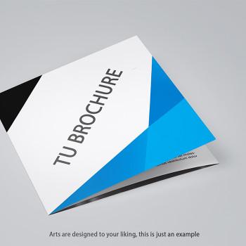 1000 Brochure 12 X 6 Full Color Entrega Incluida