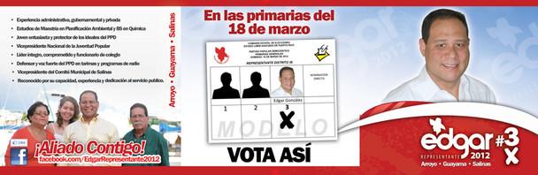 Brochure  Politica Puerto Rico