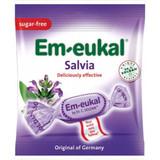 Dr. Soldan Sugar Free Salvia Lozenges in Bag
