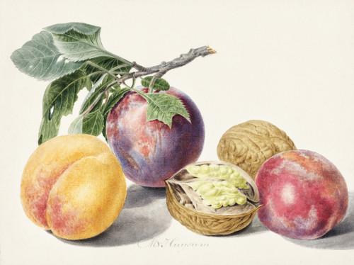 Fruits Vintage Digital Art Download