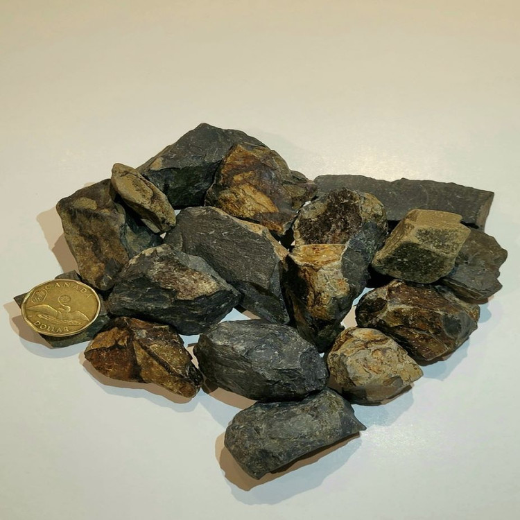 Natural dry look (coin for rock size)