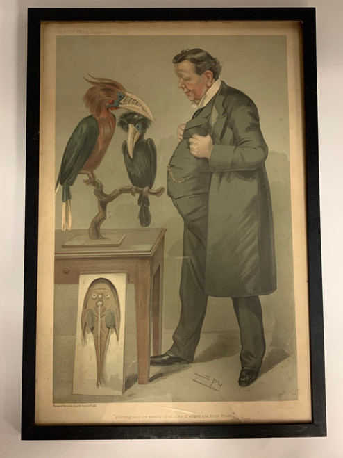 Spy Print Professor Ray Lankester, F.R.S.  #946- Antique